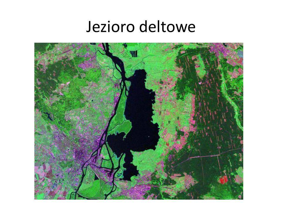 Jezioro deltowe