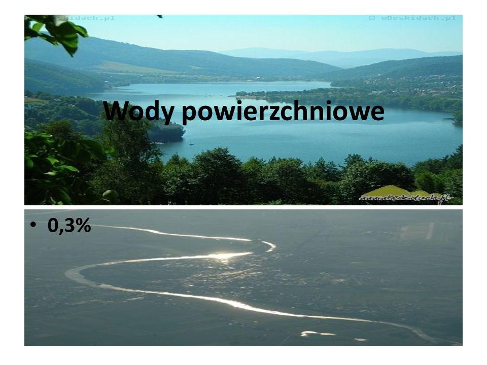 Wody powierzchniowe 0,3%