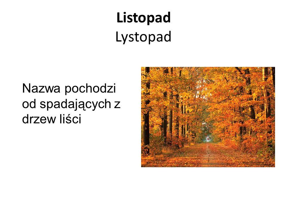 Listopad Lystopad Nazwa pochodzi od spadających z drzew liści