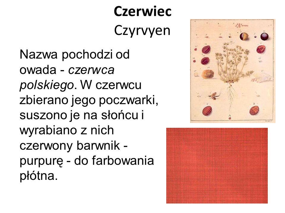 Czerwiec Czyrvyen Nazwa pochodzi od owada - czerwca polskiego. W czerwcu zbierano jego poczwarki, suszono je na słońcu i wyrabiano z nich czerwony bar