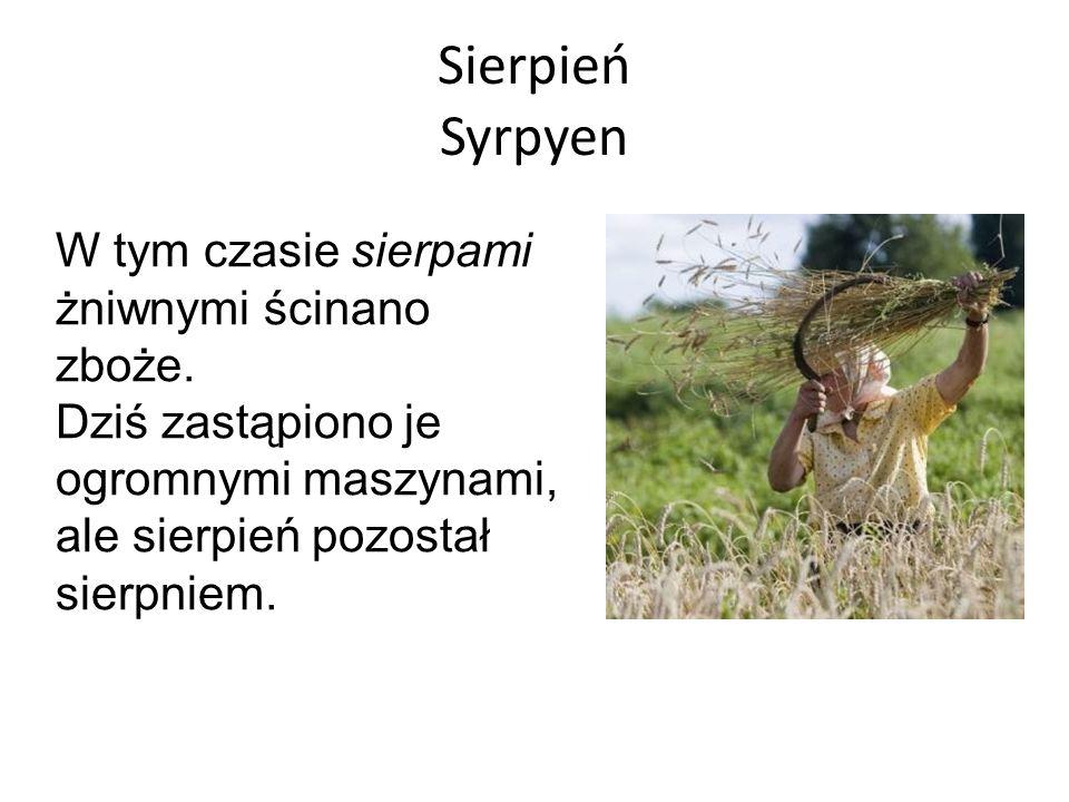 Sierpień Syrpyen W tym czasie sierpami żniwnymi ścinano zboże. Dziś zastąpiono je ogromnymi maszynami, ale sierpień pozostał sierpniem.