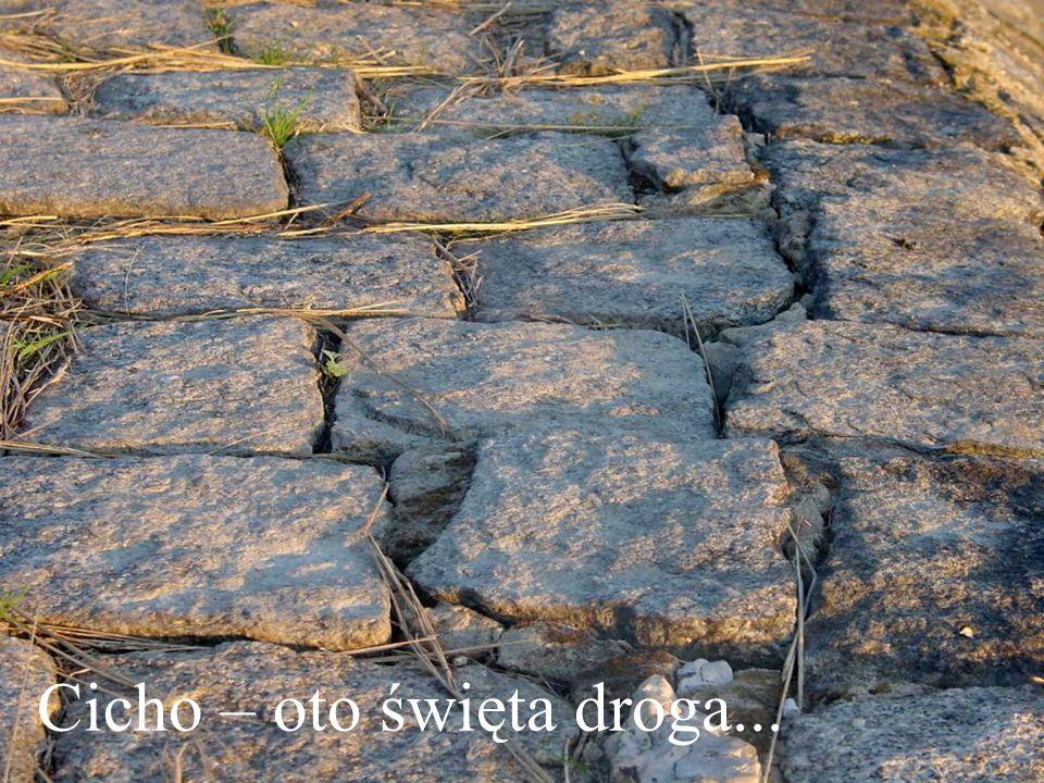 Słowa: Kard. Adam Stefan Sapieha Projekt: Maria – http://szeretlek.blog.pl