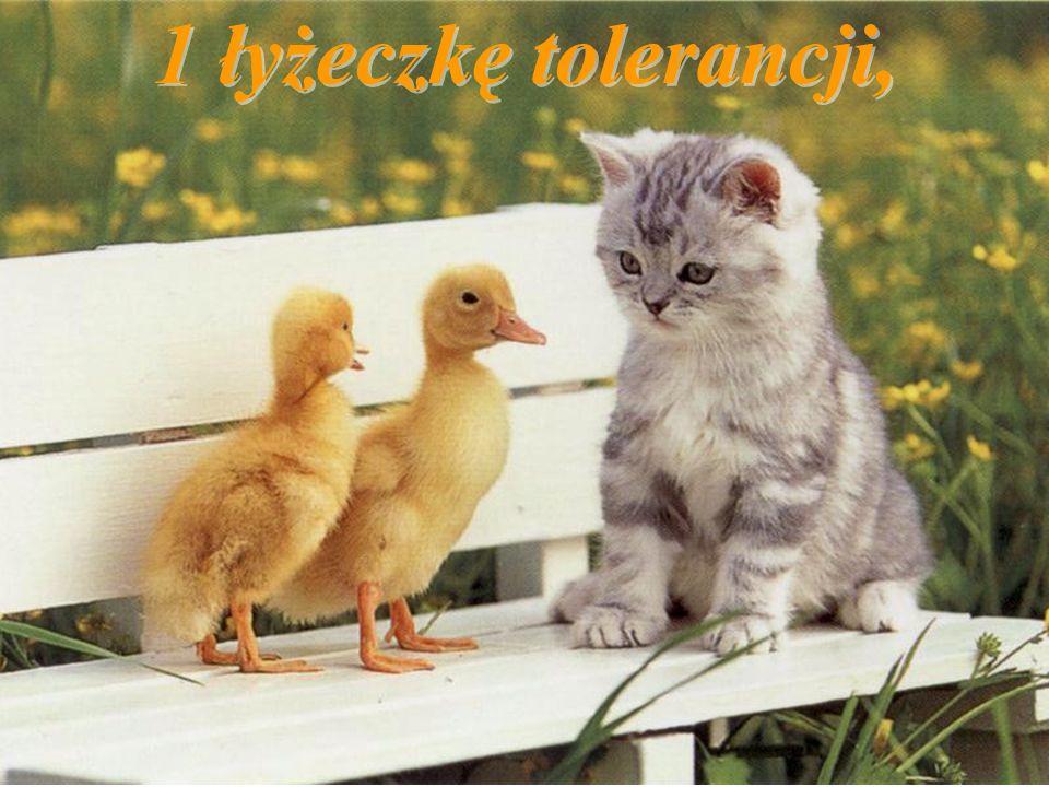 1 łyżeczkę tolerancji,
