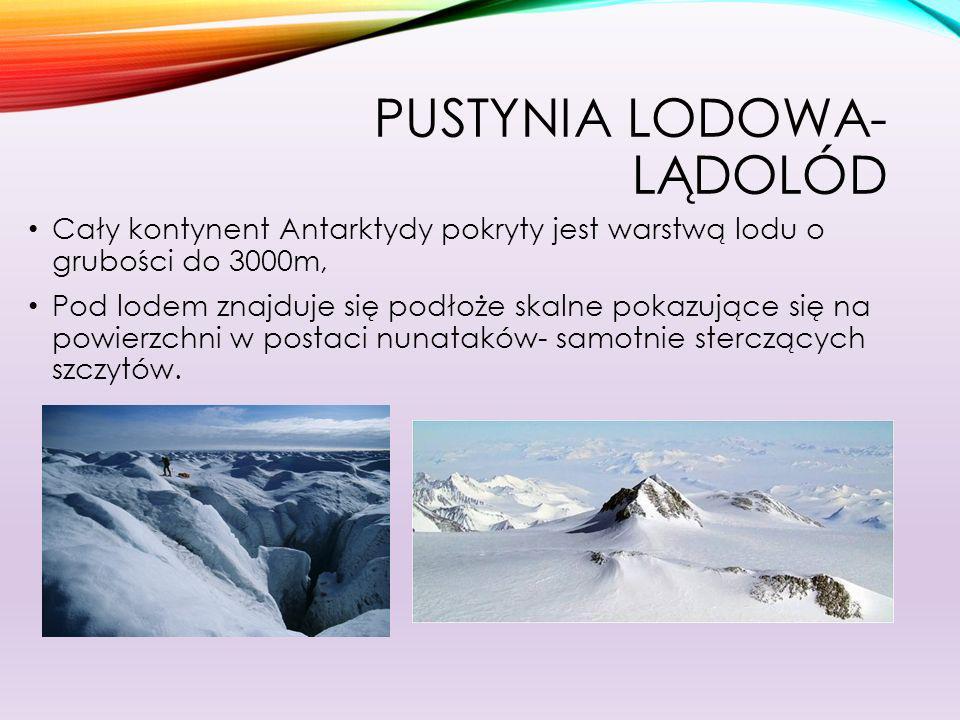 PUSTYNIA LODOWA- ETAPY TWORZENIA SIĘ LĄDOLODU 1.Pod wpływem nacisku puszystego śniegu, kryształki śniegu łączą się i tworzy się śnieg ziarnisty zwany firnem.