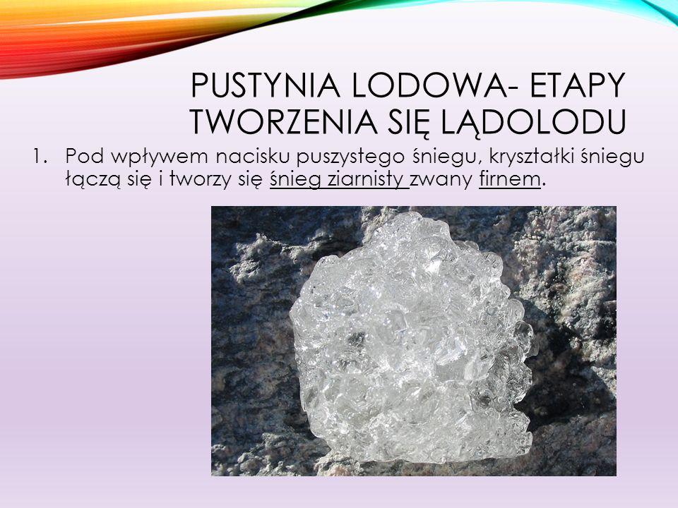 PUSTYNIA LODOWA- ETAPY TWORZENIA SIĘ LĄDOLODU 2.