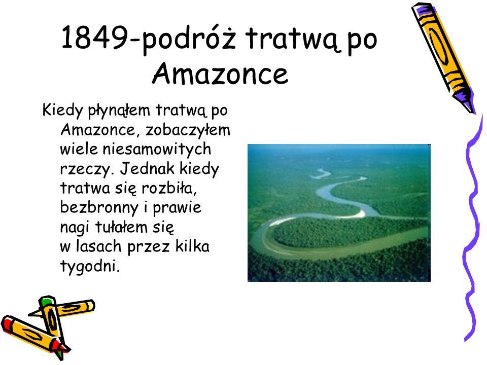 1849-podróż tratwą po Amazonce Kiedy płynąłem tratwą po Amazonce, zobaczyłem wiele niesamowitych rzeczy. Jednak kiedy tratwa się rozbiła, bezbronny i