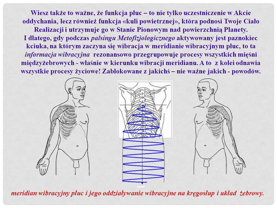 Wiesz także to ważne, że funkcja płuc – to nie tylko uczestniczenie w Akcie oddychania, lecz również funkcja «kuli powietrznej», która podnosi Twoje C
