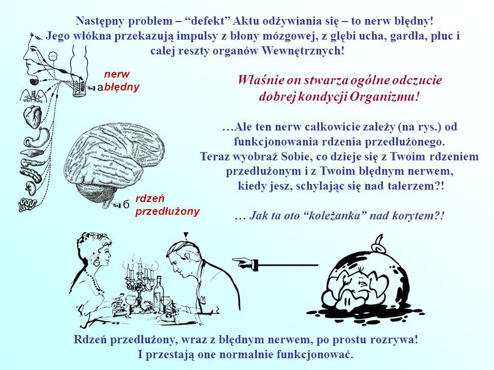 Następny problem – defekt Aktu odżywiania się – to nerw błędny! Jego włókna przekazują impulsy z błony mózgowej, z glębi ucha, gardła, płuc i całej re
