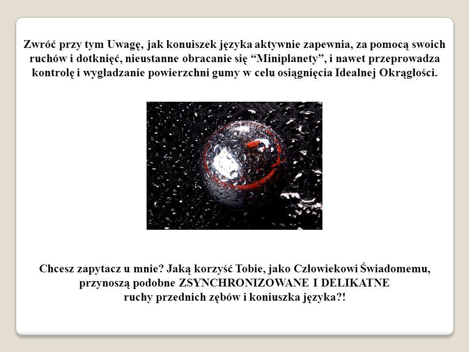 Zwróć przy tym Uwagę, jak konuiszek języka aktywnie zapewnia, za pomocą swoich ruchów i dotknięć, nieustanne obracanie się Miniplanety, i nawet przepr