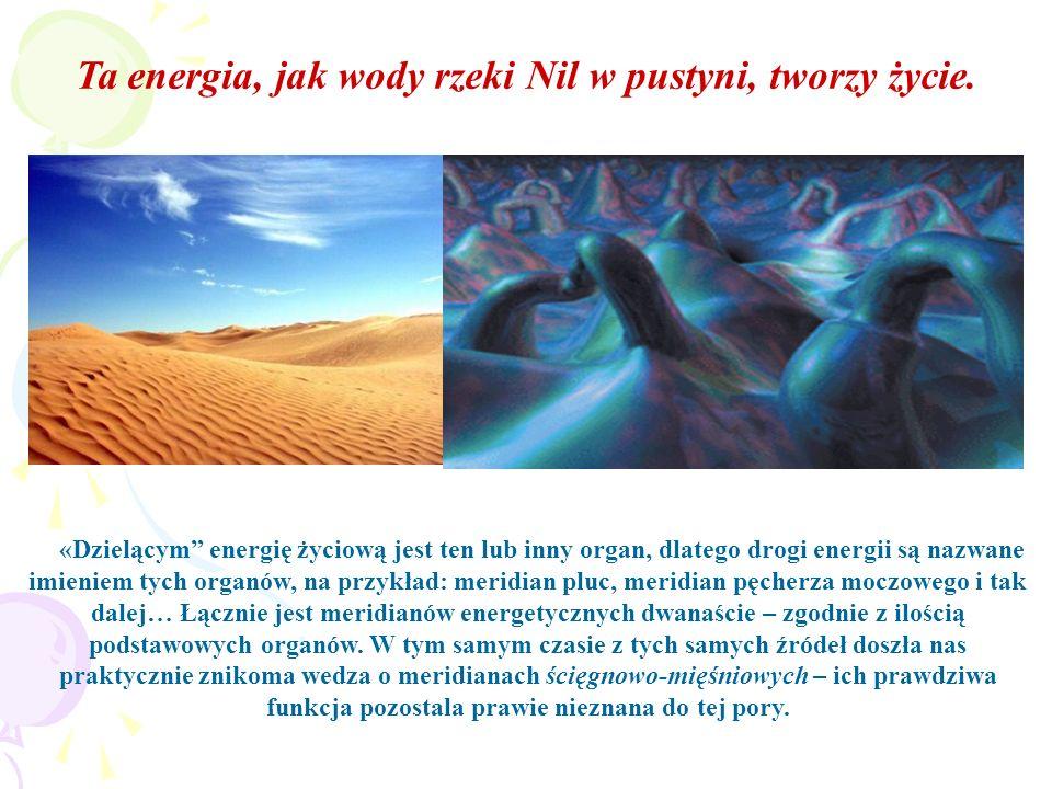 «Dzielącym energię życiową jest ten lub inny organ, dlatego drogi energii są nazwane imieniem tych organów, na przykład: meridian pluc, meridian pęche