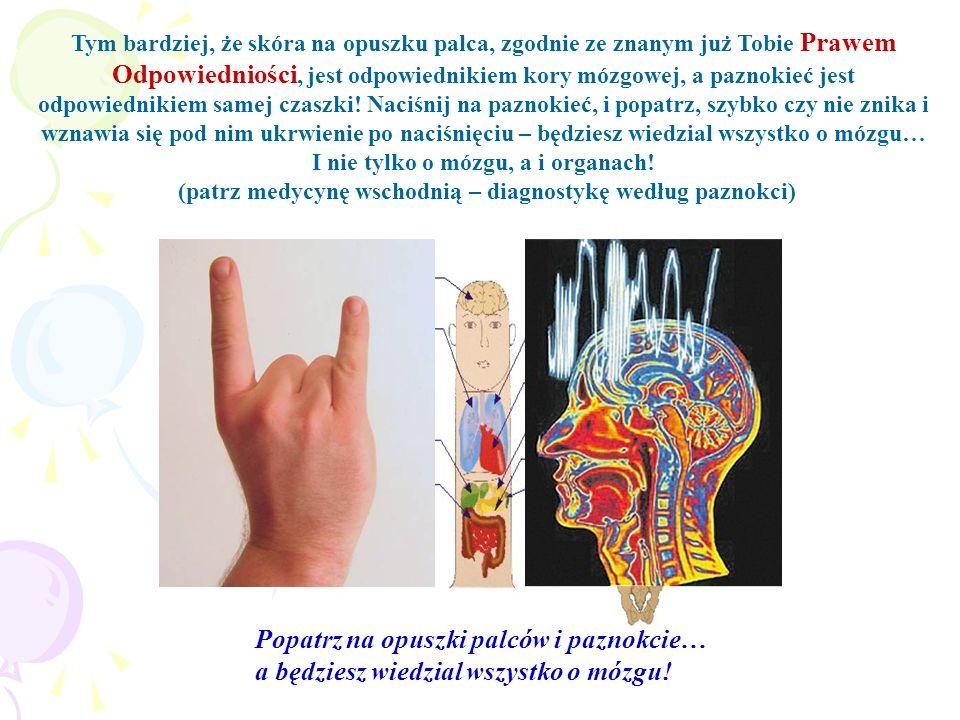 Tym bardziej, że skóra na opuszku palca, zgodnie ze znanym już Tobie Prawem Odpowiedniości, jest odpowiednikiem kory mózgowej, a paznokieć jest odpowi