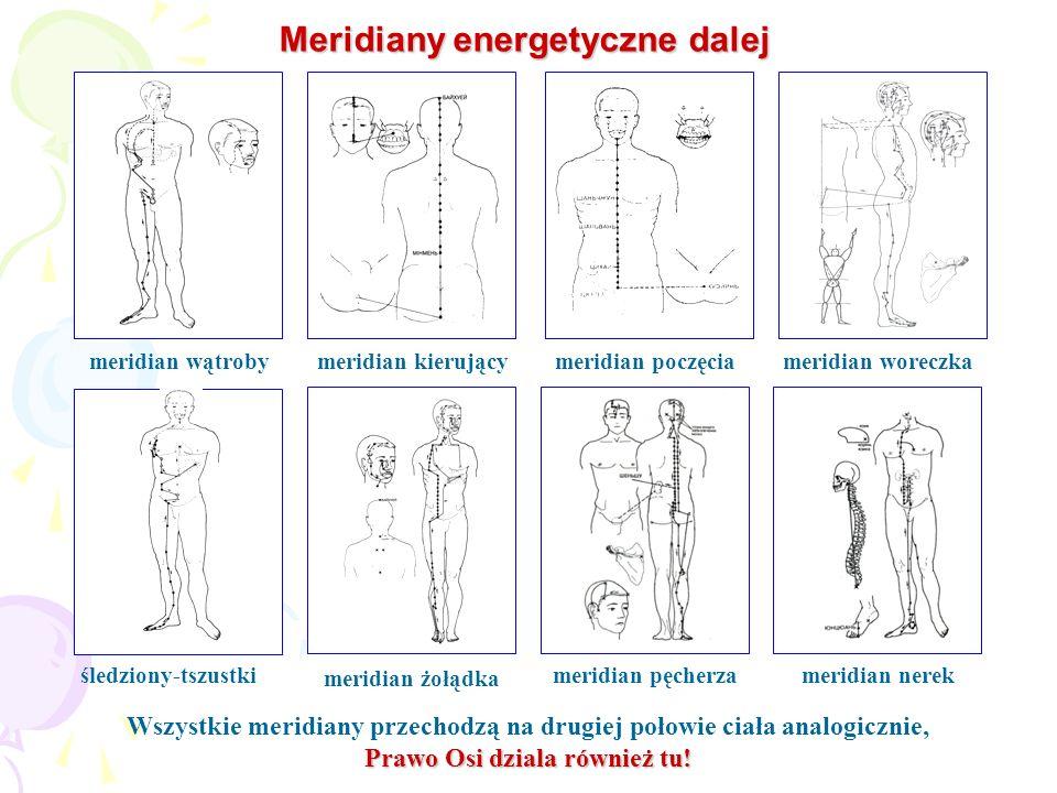 Meridiany energetyczne dalej śledziony-tszustki meridian żołądka meridian pęcherzameridian nerek meridian woreczkameridian poczęciameridian kierującym