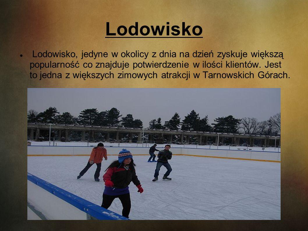 Lodowisko Lodowisko, jedyne w okolicy z dnia na dzień zyskuje większą popularność co znajduje potwierdzenie w ilości klientów. Jest to jedna z większy