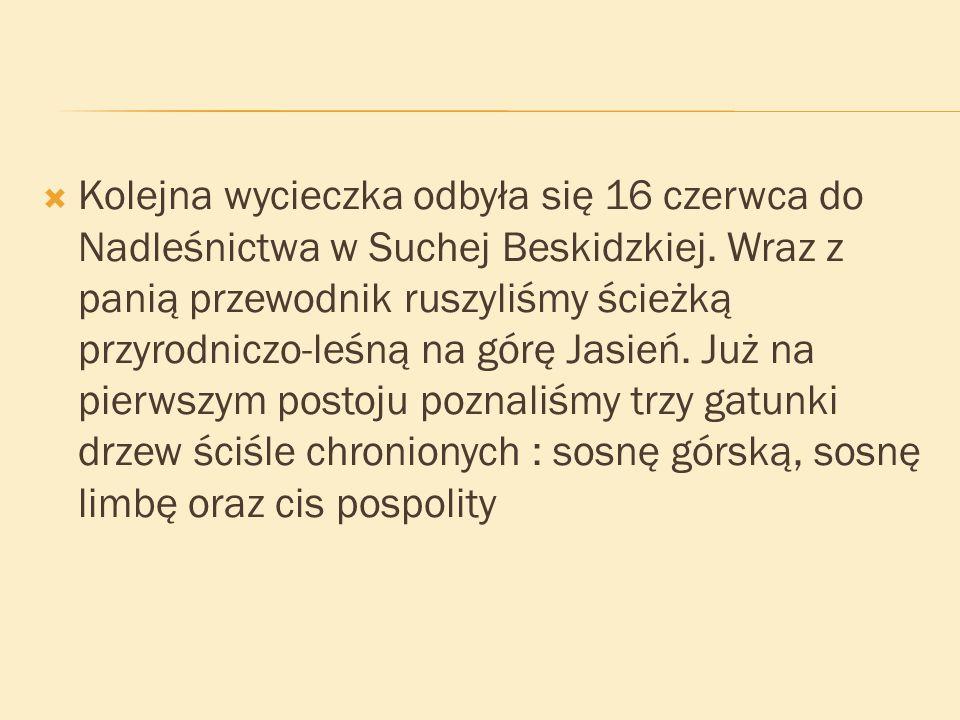 Kolejna wycieczka odbyła się 16 czerwca do Nadleśnictwa w Suchej Beskidzkiej.