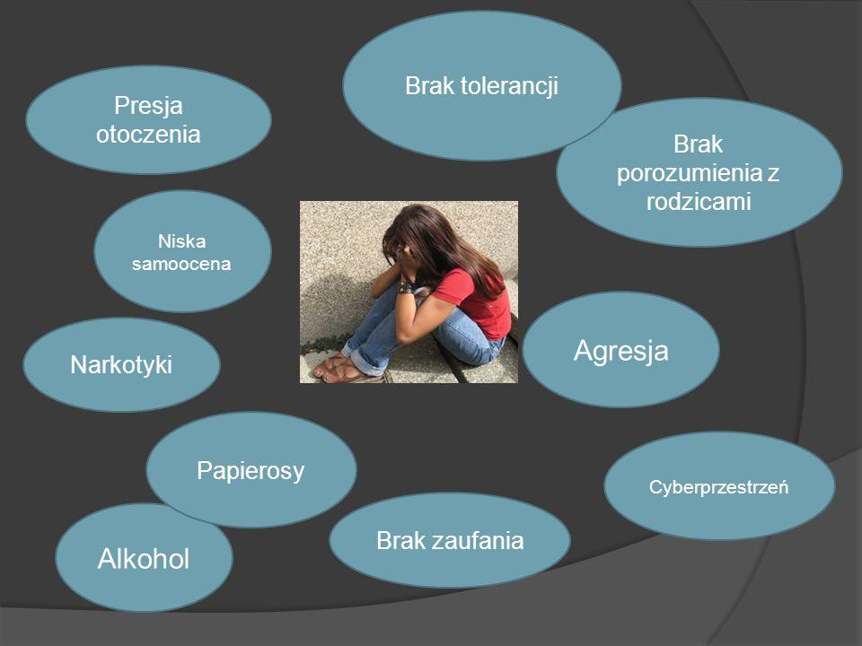 Alkohol Presja otoczenia Brak porozumienia z rodzicami Papierosy Brak tolerancji Narkotyki Niska samoocena Agresja Brak zaufania Cyberprzestrzeń