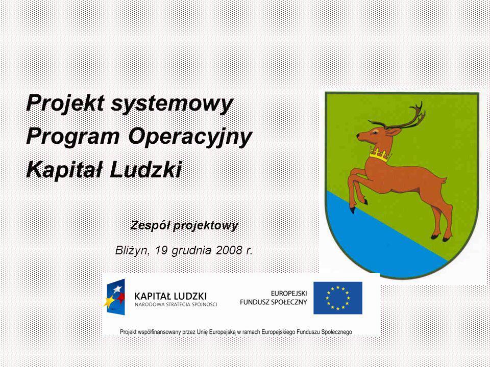 Projekt systemowy Program Operacyjny Kapitał Ludzki Zespół projektowy Bliżyn, 19 grudnia 2008 r.