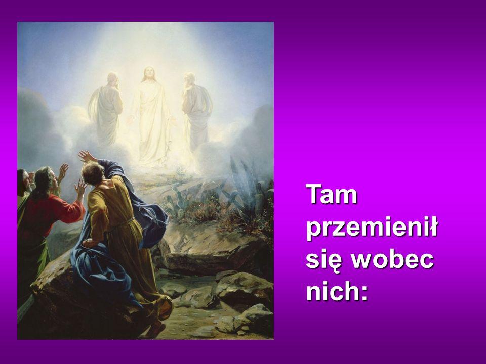 Jezus wziął ze sobą Piotra, Jakuba i brata jego Jana i zaprowadził ich na górę wysoką, osobno.