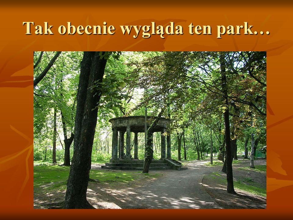 Tak obecnie wygląda ten park…