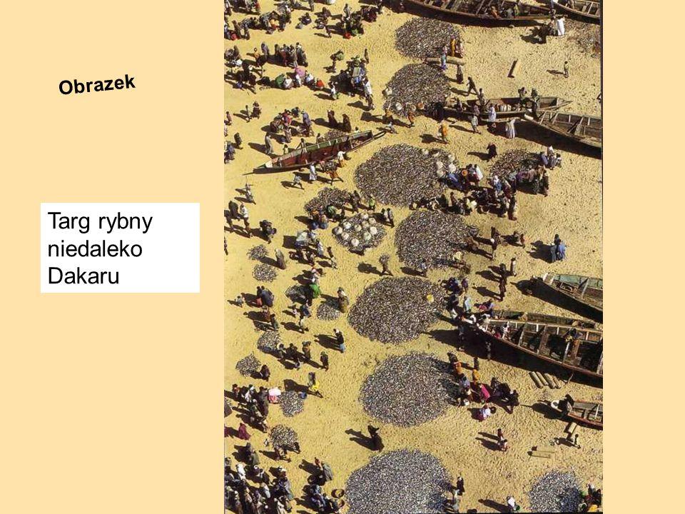 Targ rybny niedaleko Dakaru Obrazek