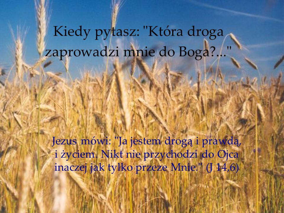 Kiedy pytasz: Która droga zaprowadzi mnie do Boga?... Jezus mówi: Ja jestem drogą i prawdą, i życiem.