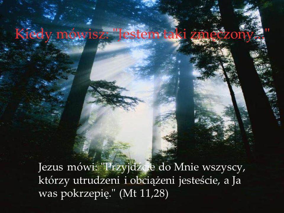 Kiedy mówisz: Jestem taki zmęczony... Jezus mówi: Przyjdźcie do Mnie wszyscy, którzy utrudzeni i obciążeni jesteście, a Ja was pokrzepię. (Mt 11,28)