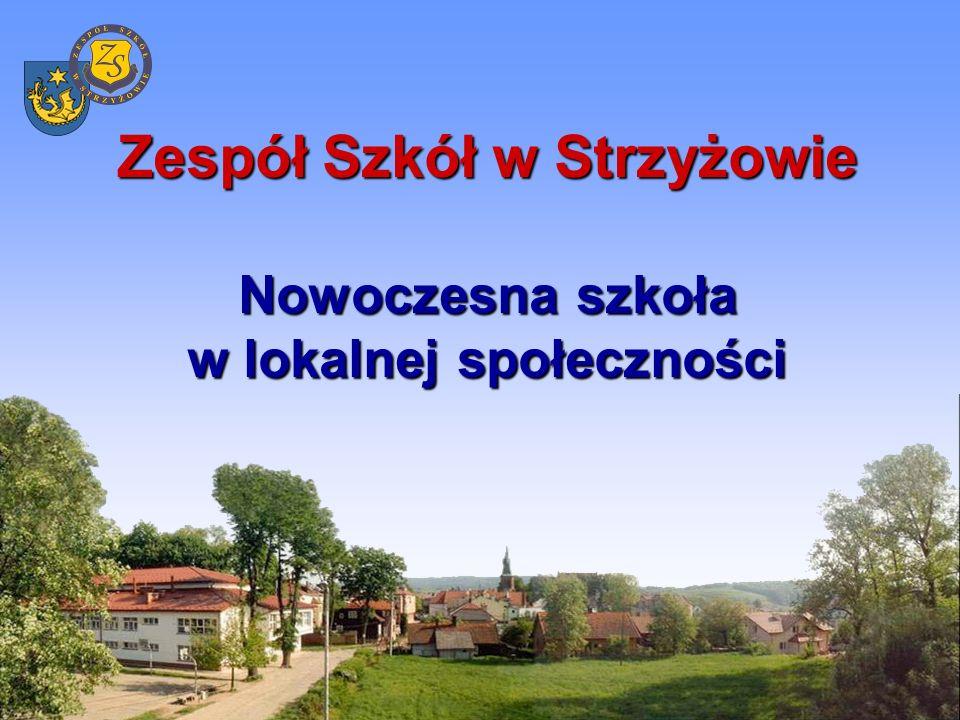 Zespół Szkół w Strzyżowie -jest największą placówką oświatową w powiecie, -prowadzi kształcenie na poziomie ponadgimnazjalnym i policealnym, -w szkole uczy się 1246 uczniów, pracuje 98 nauczycieli z pełnymi kwalifikacjami w tym 39 nauczycieli dyplomowanych.