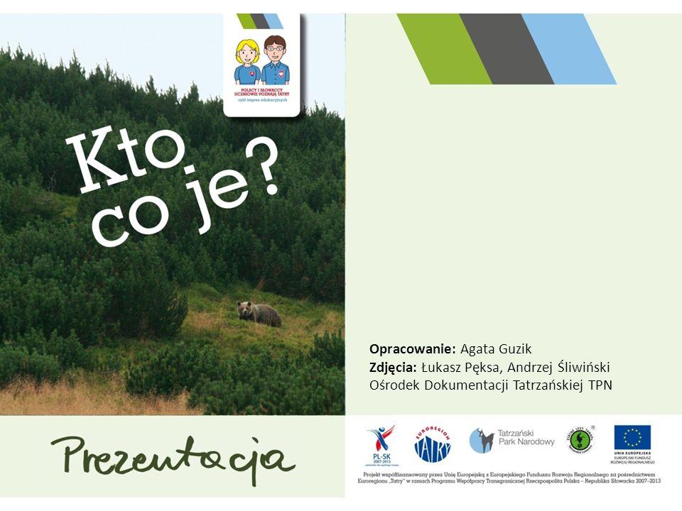 Opracowanie: Agata Guzik Zdjęcia: Łukasz Pęksa, Andrzej Śliwiński Ośrodek Dokumentacji Tatrzańskiej TPN