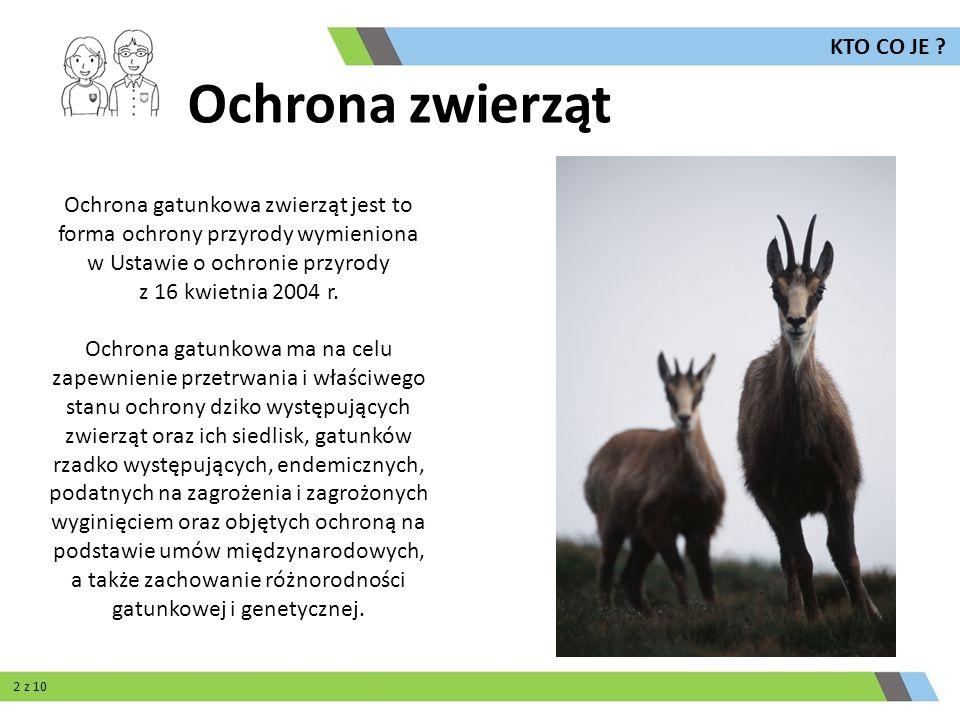 Ochrona zwierząt KTO CO JE ? Ochrona gatunkowa zwierząt jest to forma ochrony przyrody wymieniona w Ustawie o ochronie przyrody z 16 kwietnia 2004 r.