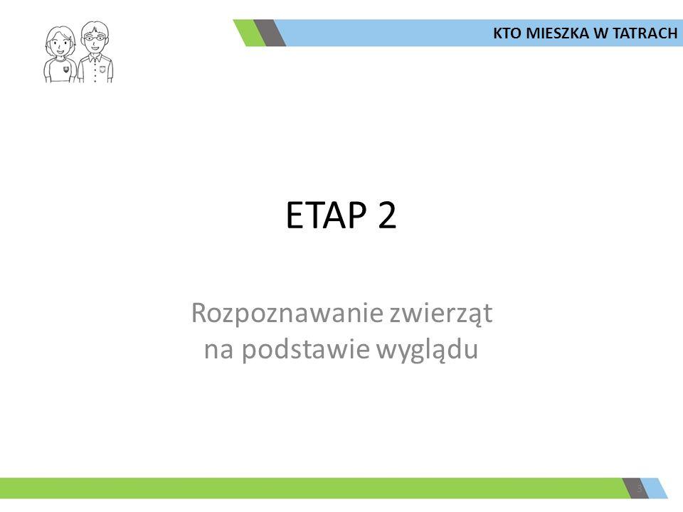 ETAP 2 3 KTO MIESZKA W TATRACH Rozpoznawanie zwierząt na podstawie wyglądu
