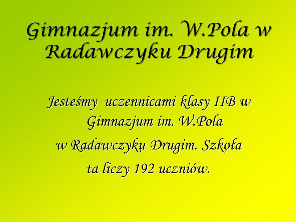 Gimnazjum im. W.Pola w Radawczyku Drugim Jesteśmy uczennicami klasy IIB w Gimnazjum im.