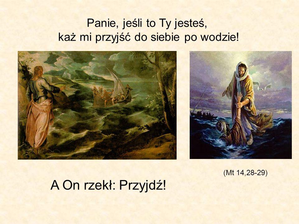 (Mt 14,28-29) A On rzekł: Przyjdź! Panie, jeśli to Ty jesteś, każ mi przyjść do siebie po wodzie!