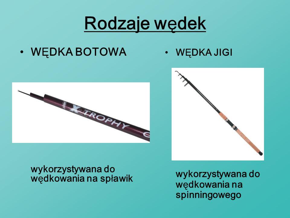 Rodzaje wędek WĘDKA BOTOWA wykorzystywana do wędkowania na spławik WĘDKA JIGI wykorzystywana do wędkowania na spinningowego