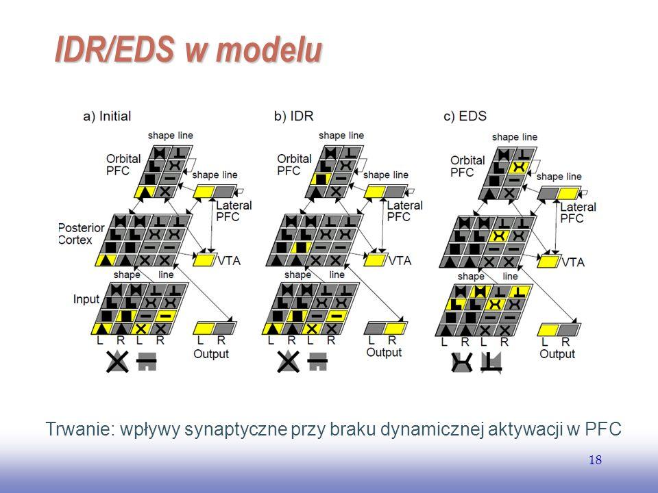EE141 18 IDR/EDS w modelu Trwanie: wpływy synaptyczne przy braku dynamicznej aktywacji w PFC