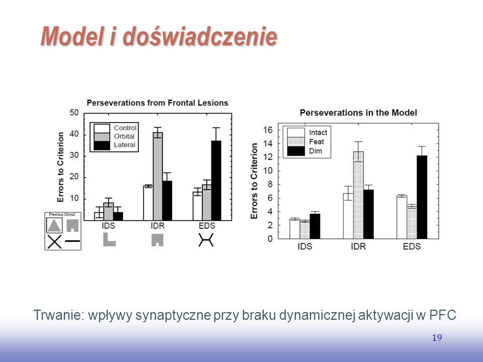 EE141 19 Model i doświadczenie Trwanie: wpływy synaptyczne przy braku dynamicznej aktywacji w PFC