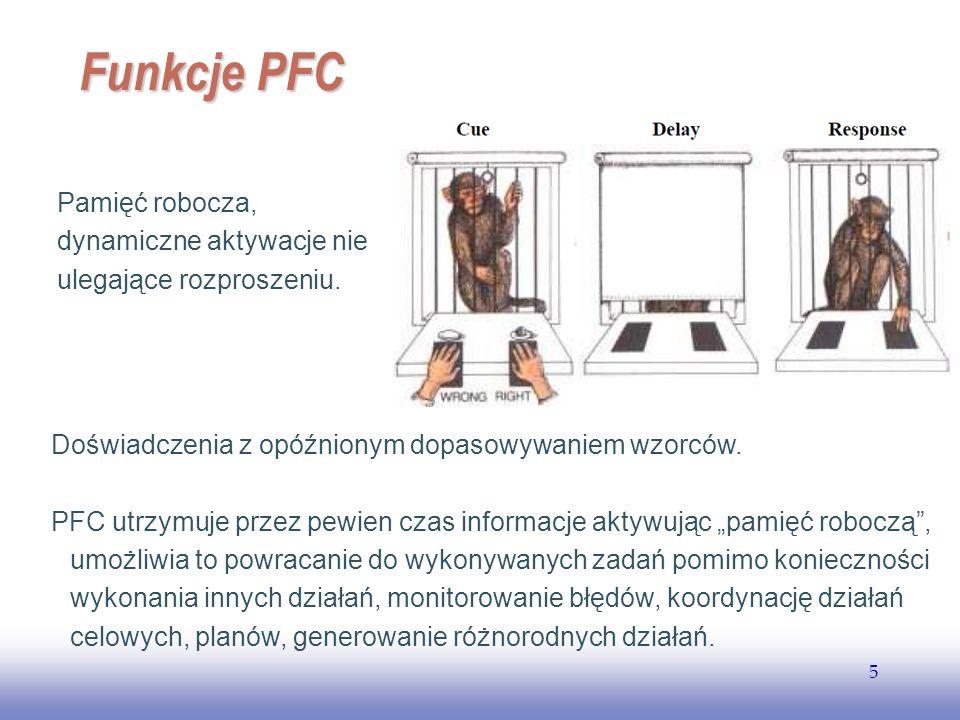 EE141 5 Funkcje PFC Pamięć robocza, dynamiczne aktywacje nie ulegające rozproszeniu. Doświadczenia z opóźnionym dopasowywaniem wzorców. PFC utrzymuje