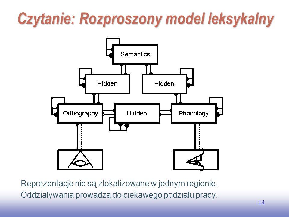 EE141 14 Czytanie: Rozproszony model leksykalny Reprezentacje nie są zlokalizowane w jednym regionie. Oddziaływania prowadzą do ciekawego podziału pra