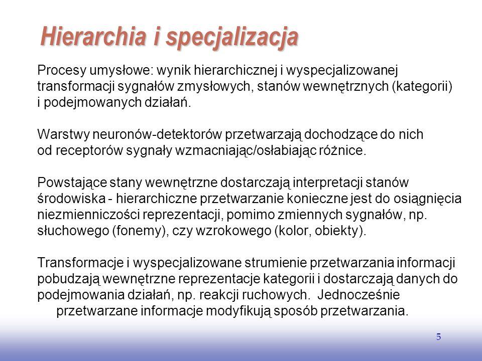 EE141 5 Hierarchia i specjalizacja Procesy umysłowe: wynik hierarchicznej i wyspecjalizowanej transformacji sygnałów zmysłowych, stanów wewnętrznych (kategorii) i podejmowanych działań.