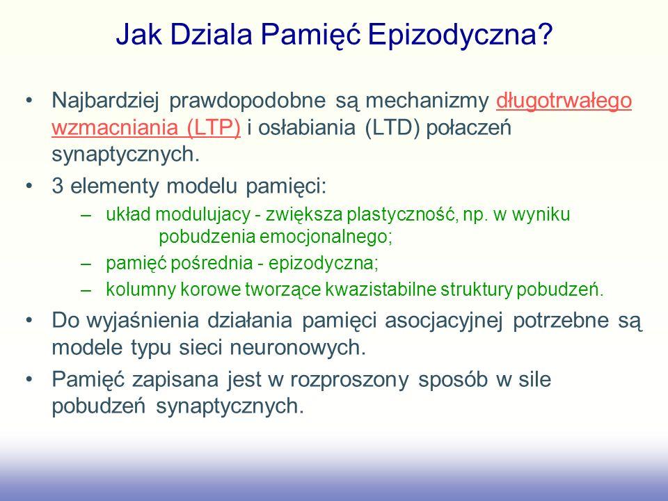 Jak Dziala Pamięć Epizodyczna? Najbardziej prawdopodobne są mechanizmy długotrwałego wzmacniania (LTP) i osłabiania (LTD) połaczeń synaptycznych.długo