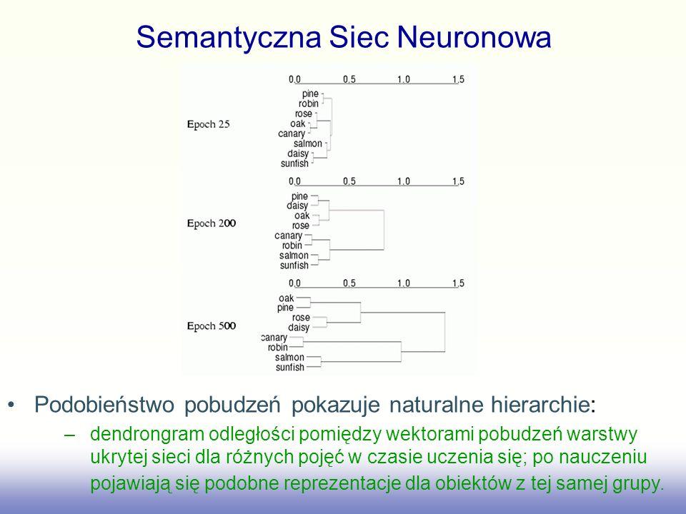 Semantyczna Siec Neuronowa Podobieństwo pobudzeń pokazuje naturalne hierarchie: –dendrongram odległości pomiędzy wektorami pobudzeń warstwy ukrytej si