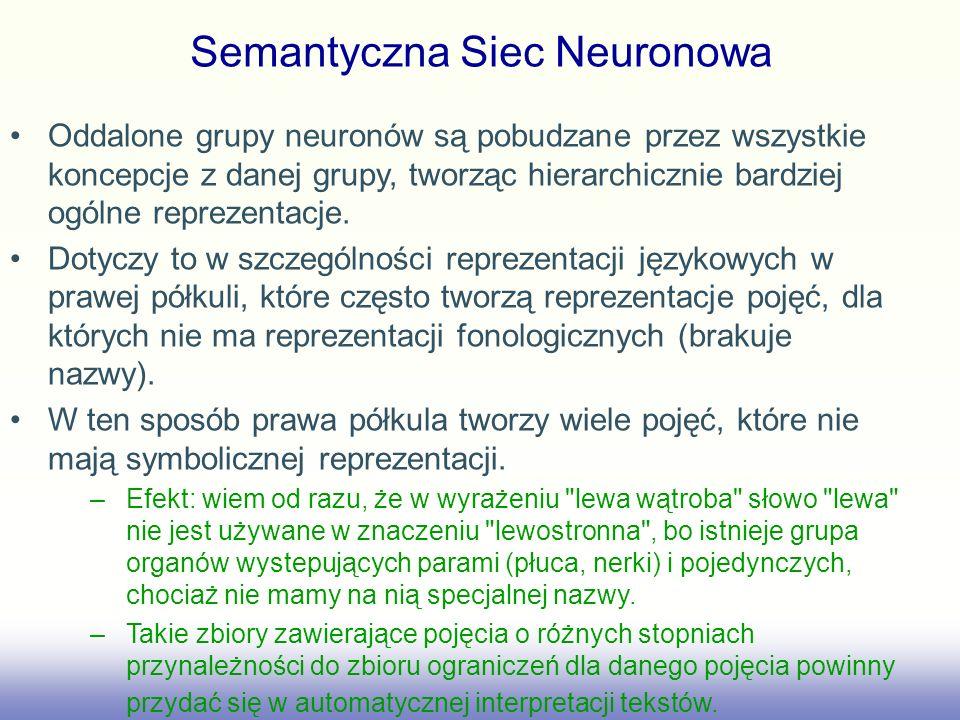 Semantyczna Siec Neuronowa Oddalone grupy neuronów są pobudzane przez wszystkie koncepcje z danej grupy, tworząc hierarchicznie bardziej ogólne reprez