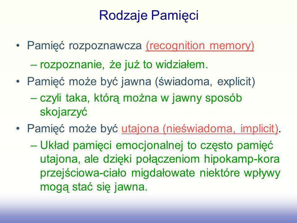Pamięć rozpoznawcza (recognition memory)(recognition memory) –rozpoznanie, że już to widziałem. Pamięć może być jawna (świadoma, explicit) –czyli taka