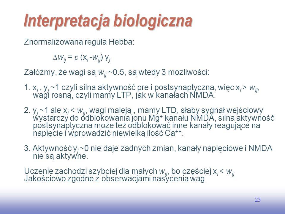 EE141 23 Interpretacja biologiczna Znormalizowana reguła Hebba: w ij = (x i -w ij ) y j Załóżmy, że wagi są w ij ~0.5, są wtedy 3 mozliwości: 1. x i,