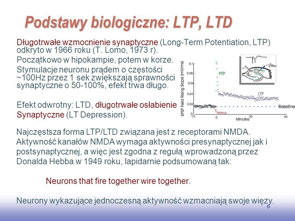 EE141 6 Podstawy biologiczne: LTP, LTD Długotrwałe wzmocnienie synaptyczne (Long-Term Potentiation, LTP) odkryto w 1966 roku (T. Lomo, 1973 r). Począt
