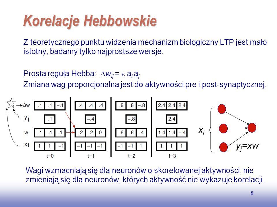 EE141 8 Korelacje Hebbowskie Z teoretycznego punktu widzenia mechanizm biologiczny LTP jest mało istotny, badamy tylko najprostsze wersje. Prosta regu