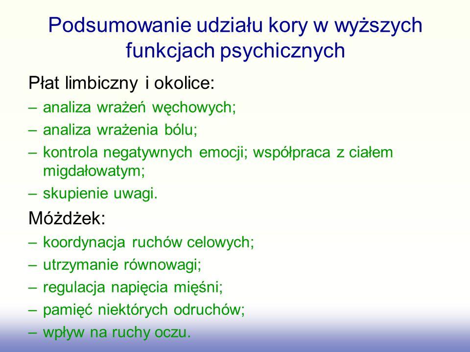 Podsumowanie udziału kory w wyższych funkcjach psychicznych Płat limbiczny i okolice: –analiza wrażeń węchowych; –analiza wrażenia bólu; –kontrola neg