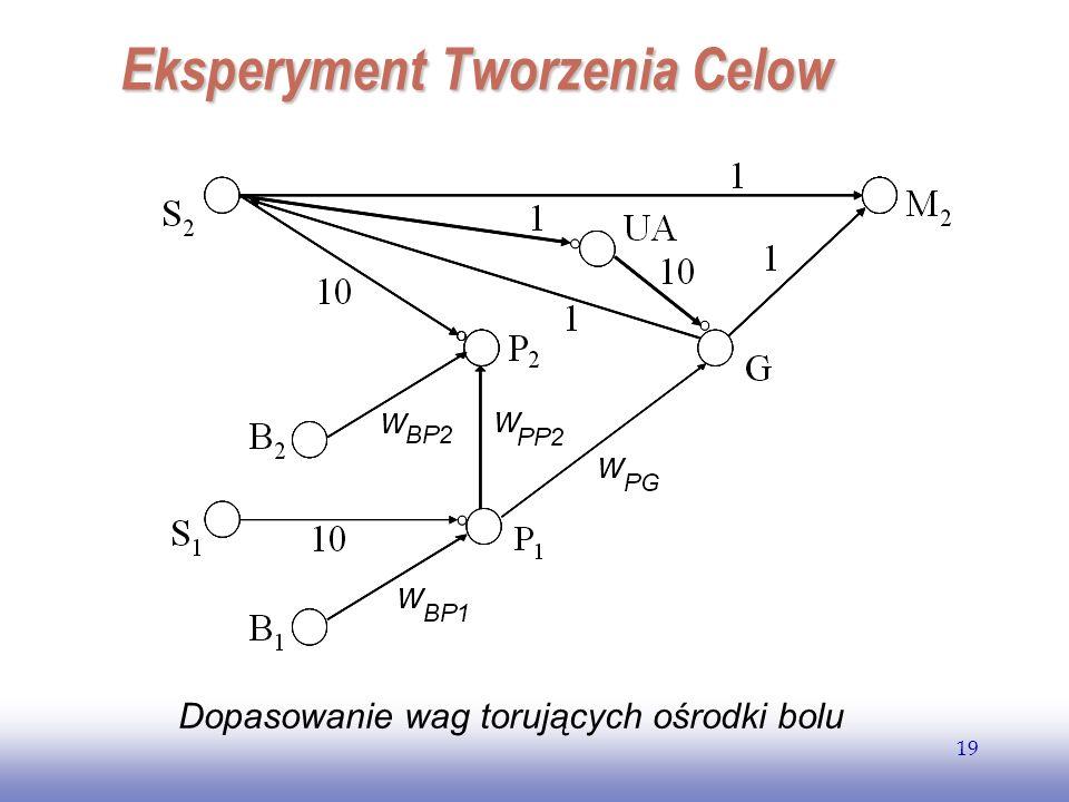 EE141 19 Dopasowanie wag torujących ośrodki bolu Eksperyment Tworzenia Celow