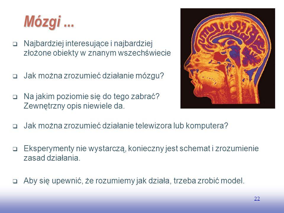 EE141 22 Mózgi... Najbardziej interesujące i najbardziej złożone obiekty w znanym wszechświecie Jak można zrozumieć działanie mózgu? Na jakim poziomie