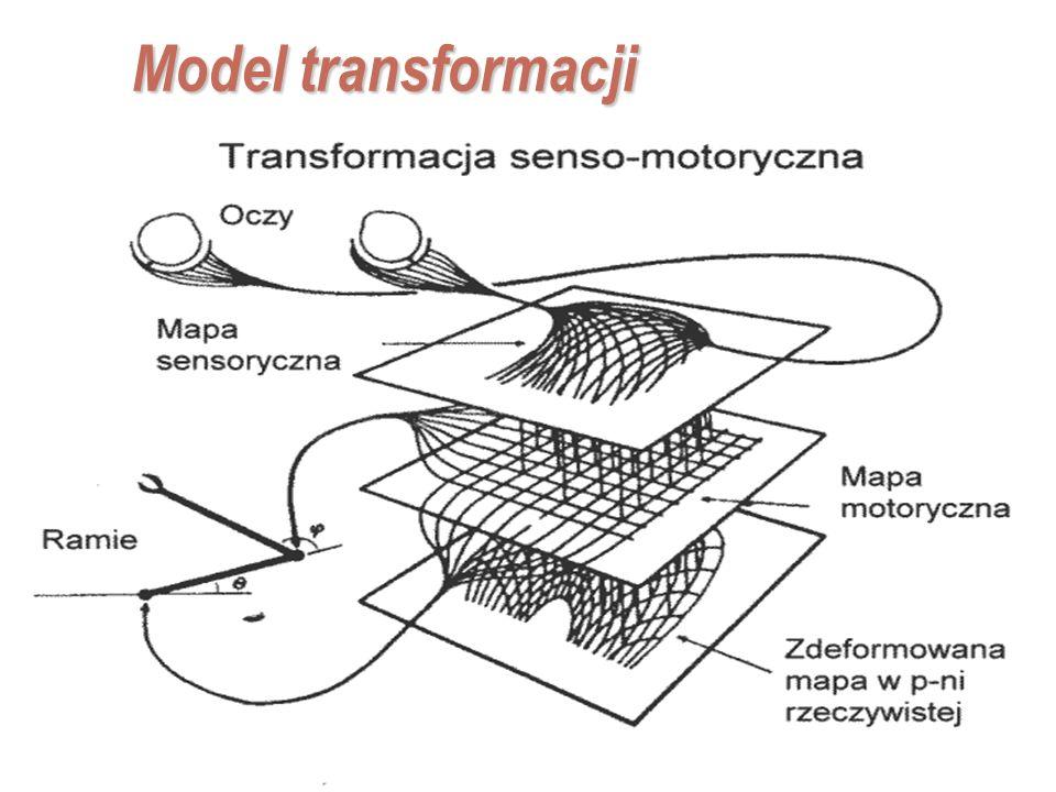 EE141 32 Model transformacji Przetwarzanie informacji, pomijane sprzężenia zwrotne: redukcja ilości informacji (kategoryzacja), działania senso-motory