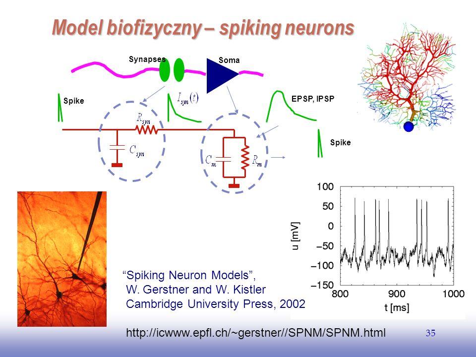 EE141 35 Model biofizyczny – spiking neurons EPSP, IPSP Spike Soma Synapses Spiking Neuron Models, W. Gerstner and W. Kistler Cambridge University Pre