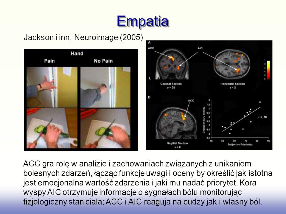 EmpatiaEmpatia Jackson i inn, Neuroimage (2005) ACC gra rolę w analizie i zachowaniach związanych z unikaniem bolesnych zdarzeń, łącząc funkcje uwagi